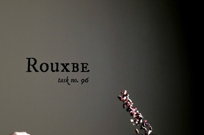 My First Six Weeks at Rouxbe!