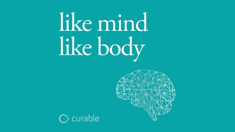 like mind like body
